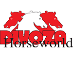 logo Divoza