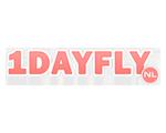 Logo 1DayFly
