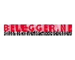 Logo Belegger.nl