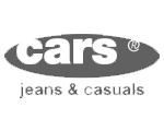 logo Cars Store