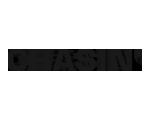 logo Chasin'