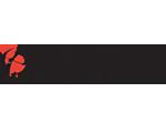 Logo Concepts ICT