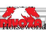 Logo Divoza