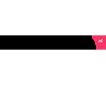 Logo HoutenSpeelgoedBeesten.nl