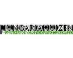 logo Hungaria Huizen