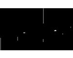 Logo Loesje