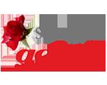 Logo Seniorengeluk.nl