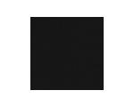 Logo TwinLife