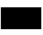 Logo Van den Assem Schoenen